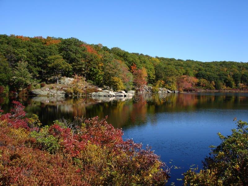 Lagoa pequena no parque estadual de Harriman, NY imagem de stock
