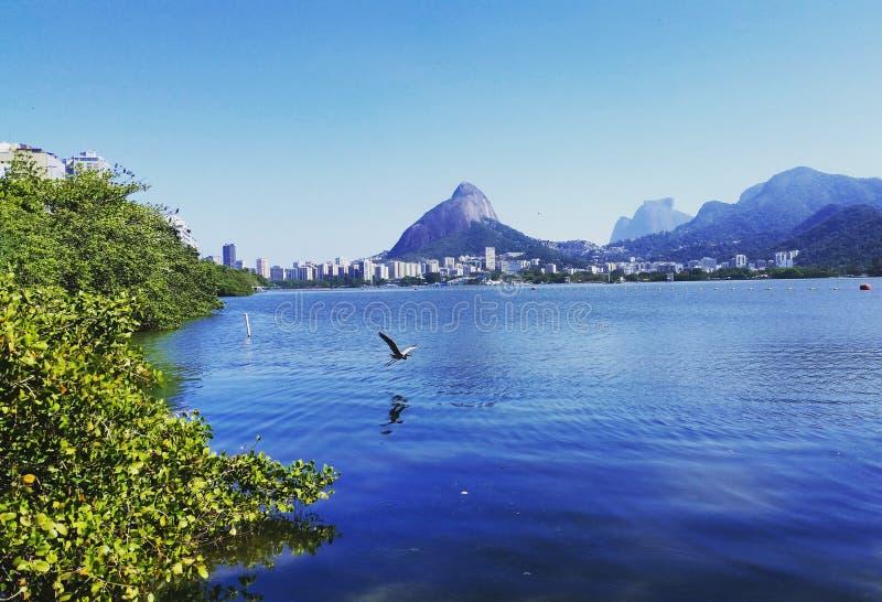 Lagoa Rio de janeiro fotografia de stock