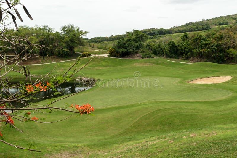 Lagoa, ?rvores e dep?sito da areia na paisagem bonita do campo de golfe imagens de stock royalty free