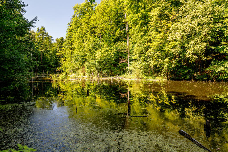 Lagoa superior, Kytayiv, Kiev imagem de stock