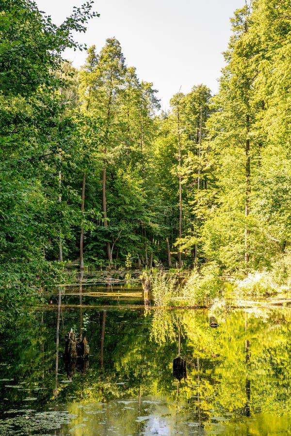 Lagoa superior, Kytayiv, Kiev fotos de stock royalty free