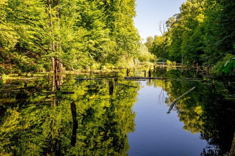 Lagoa superior, Kytayiv, Kiev fotografia de stock
