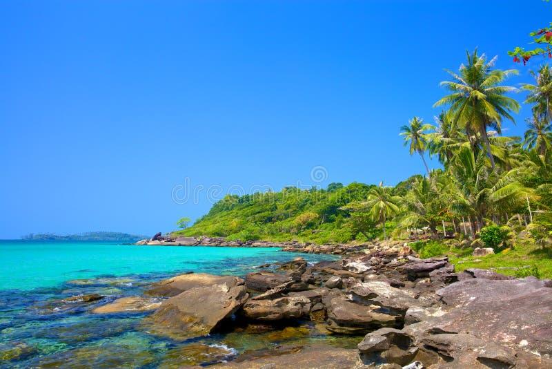 Lagoa tropical foto de stock