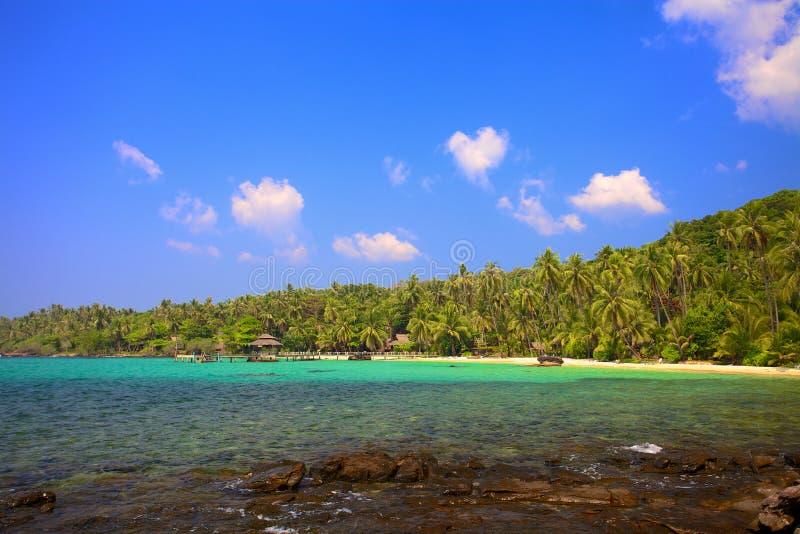 Lagoa tropical imagens de stock