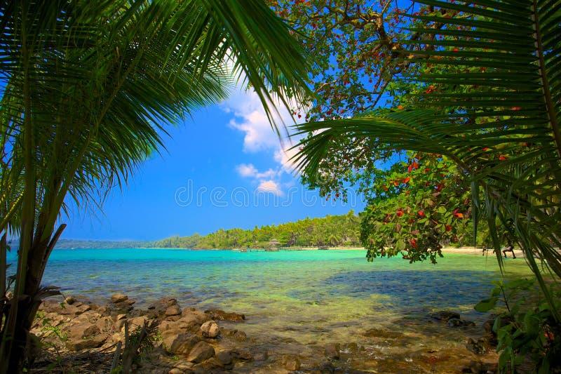 Lagoa tropical foto de stock royalty free