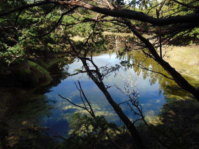 Lagoinha zdjęcie royalty free