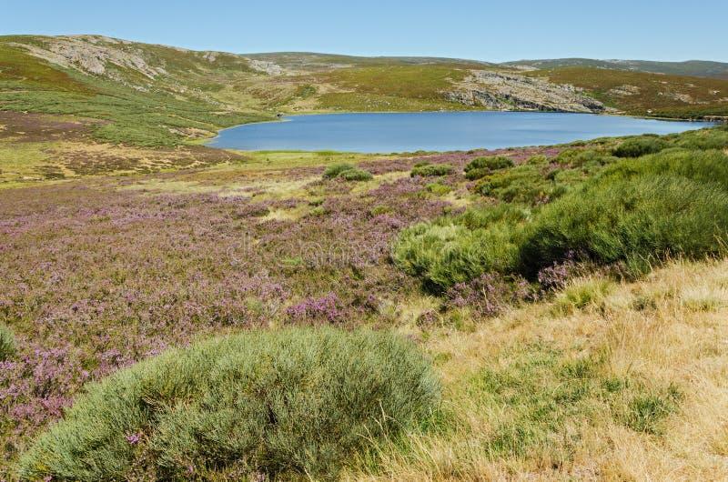 Download Lagoon stock image. Image of mountain, lake, beauty, spain - 32901863