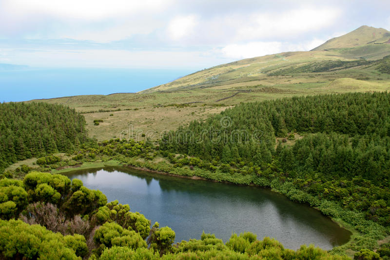 Lagoon in Pico island. Azores royalty free stock image