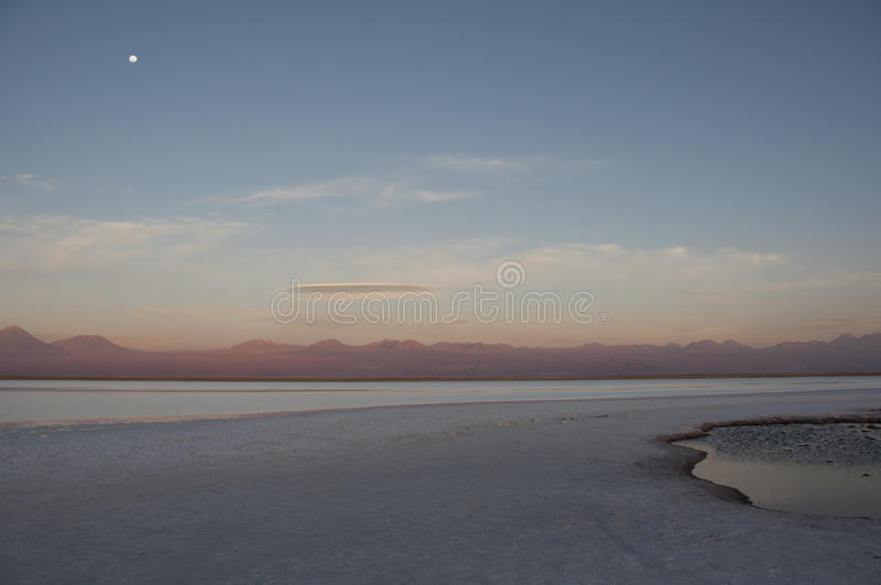 Download Lagoon saltwater, Chile stock image. Image of lagoon - 67703917