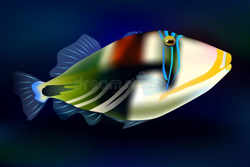 Lagoon triggerfish, vector illustration sea ocean fish. Lagoon triggerfish, vector illustration sea royalty free illustration