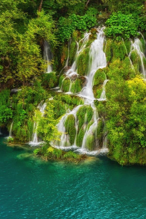 Lagos asombrosos y cascadas esmeralda, rodeados por los bosques en los lagos parque nacional Plitvice, Croacia fotos de archivo libres de regalías