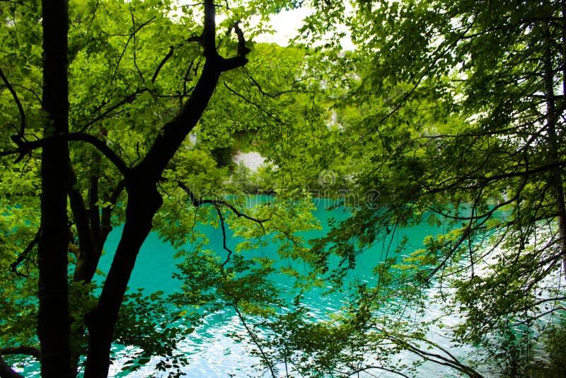 Lagos Croacia Plitvice foto de archivo libre de regalías