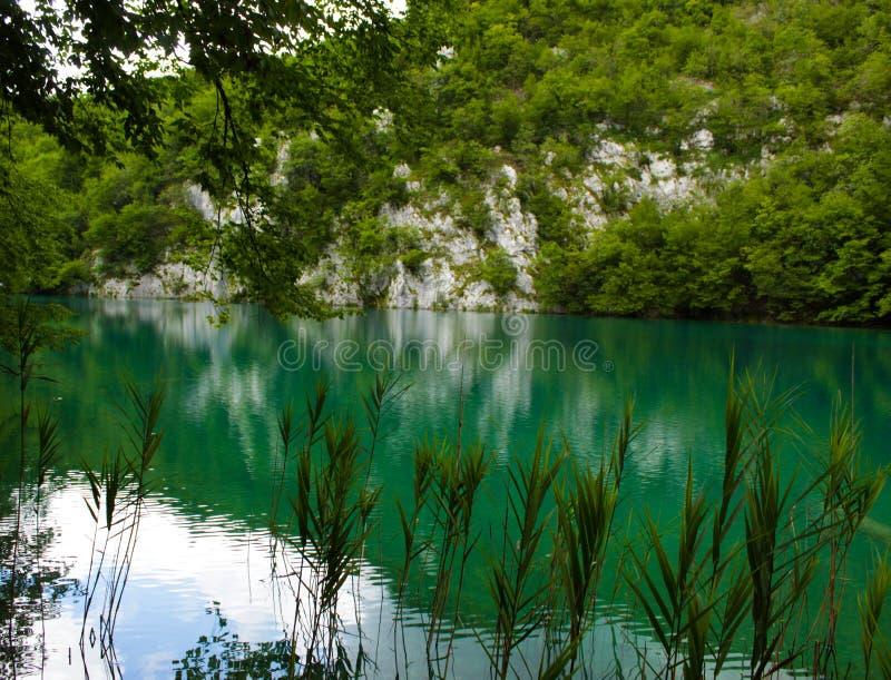 Lagos Croacia Plitvice imagenes de archivo