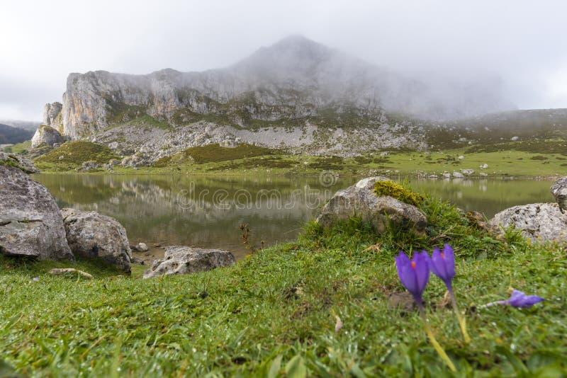 Lagos de Covadonga fotografía de archivo