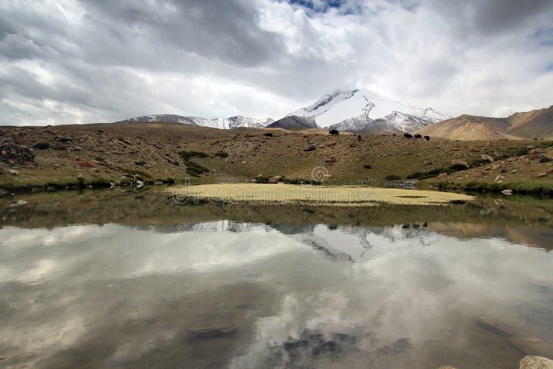 Lagos Himalayan asombrosos a lo largo del viaje de Ladahk fotografía de archivo