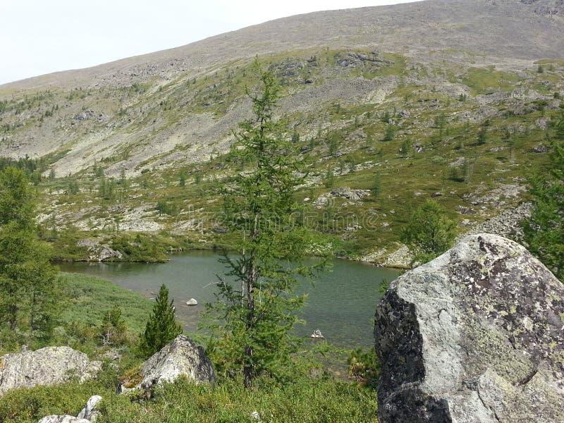 Lagos Karakol en las montañas 2014 de Altai imagen de archivo libre de regalías