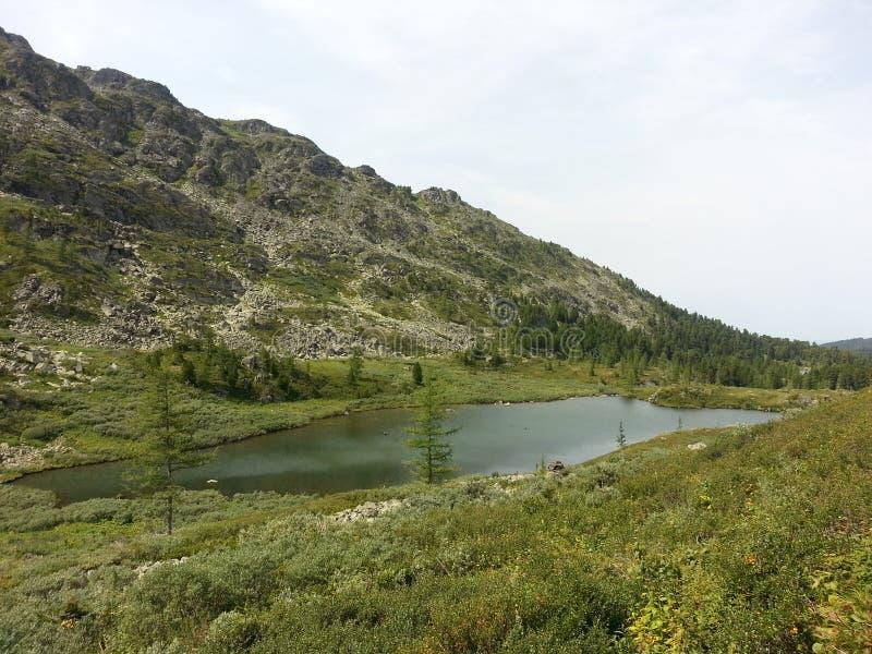 Lagos Karakol en las montañas 2014 de Altai imagen de archivo