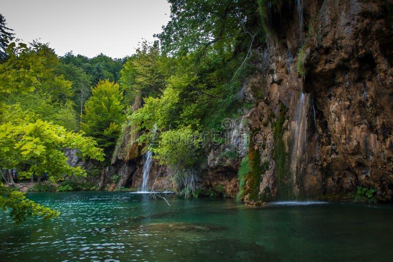 Lagos y bosques hermosos, lagos Plitvice, parque nacional, bosque, Croacia foto de archivo