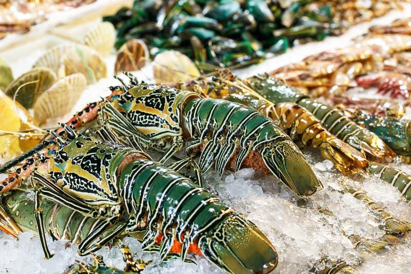 Lagosta e camarões grandes frescos no mercado imagem de stock