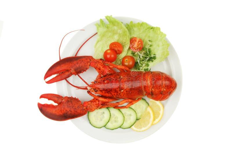 A lagosta e decora fotografia de stock royalty free
