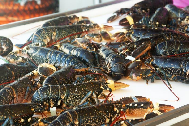 Lagosta no contador do mercado de peixes em França imagem de stock royalty free