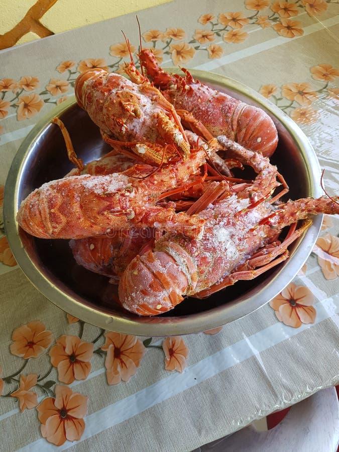 lagostas fotografia de stock
