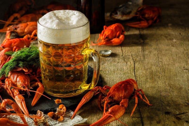 Lagostins fervidos frescos e uma caneca de cerveja em uma tabela de madeira fotos de stock royalty free