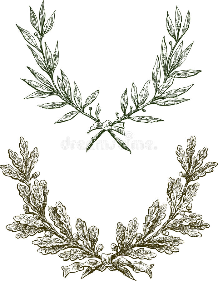 Lagrar och oaken förgrena sig stock illustrationer