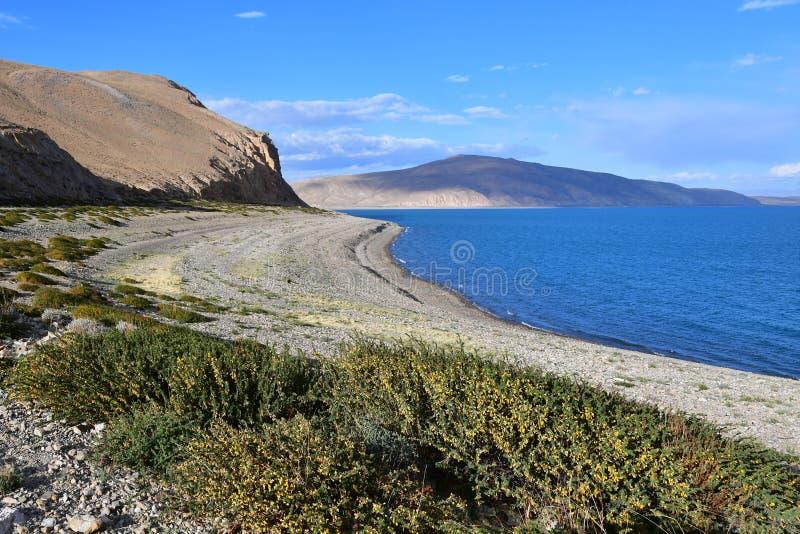Lagret av den heliga Rakshas Tal sjön i juni, västra Tibet, Kina Denna sjö också som är bekant som demon sjön, Ravana Tal eller R royaltyfri foto