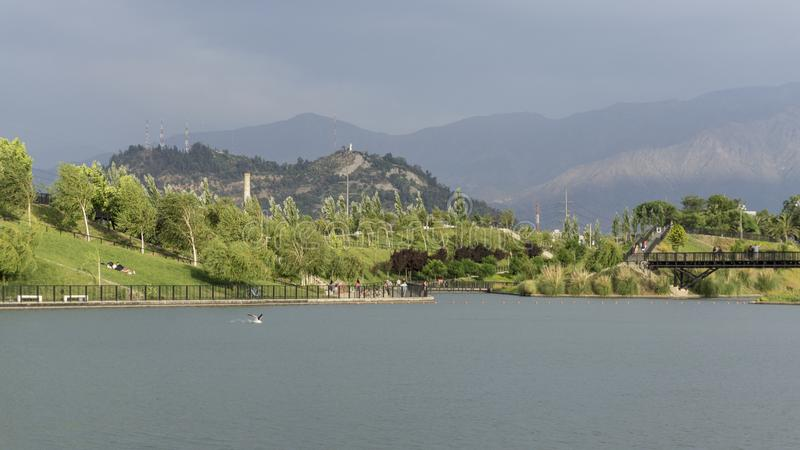 Lagun i staden royaltyfria foton
