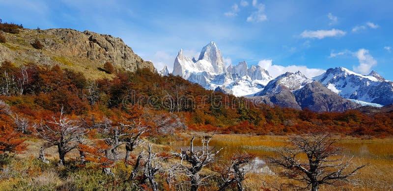 Laguna Капри и держатель Fitz Рой с цветами осени, Аргентина стоковое фото rf