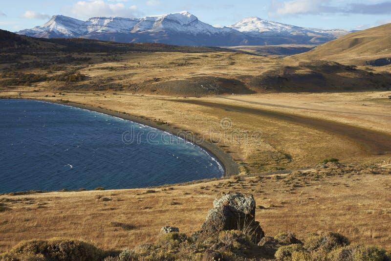 Laguna Azul, parc national de Torres del Paine, Chili image libre de droits