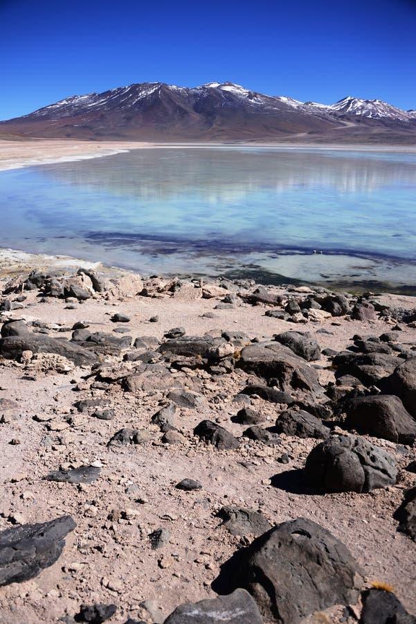 Laguna Blanca in Bolivië royalty-vrije stock afbeelding