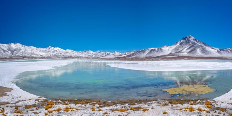 Laguna Blanca, de provincie van Sud Lipez, Potosi Bolivië stock foto