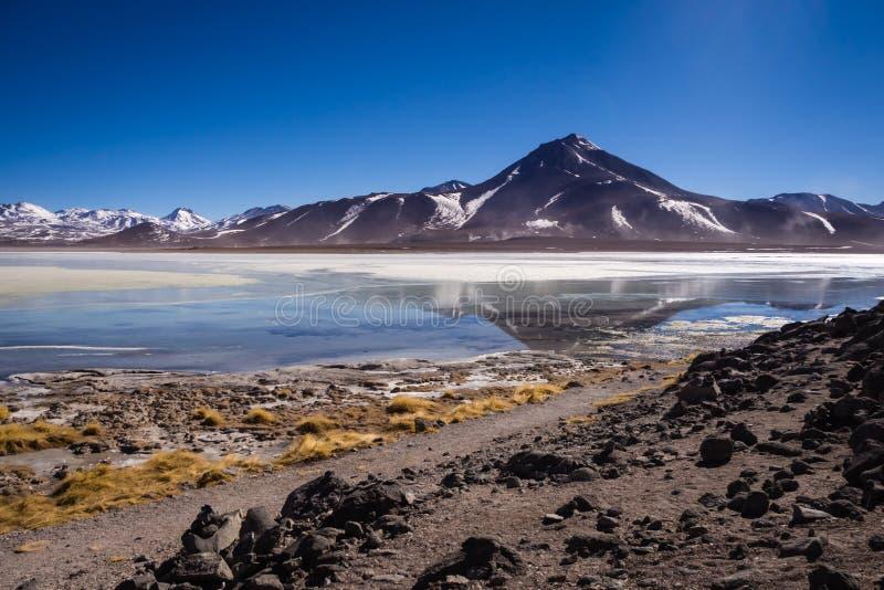 Laguna Blanca jest słonym jeziorem przy stopą wulkany, Eduardo Avaroa Andyjskich faun Krajowa rezerwa Licancabur i Juriques -, obrazy royalty free