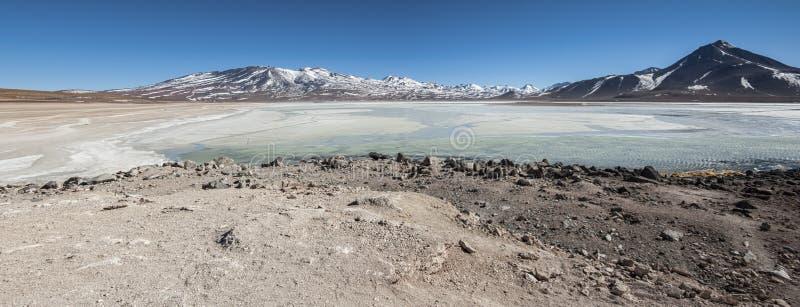 Laguna Blanca White lagoon and Licancabur volcano, Bolivia royalty free stock image