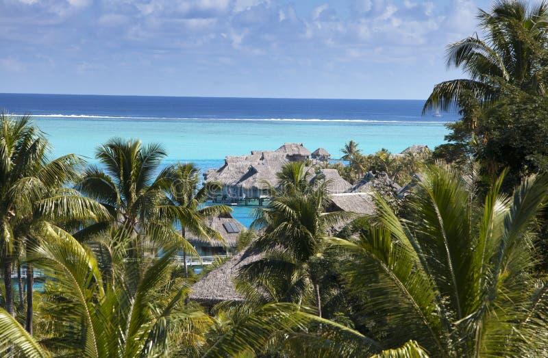 Laguna blu dell'isola di Bora Bora, Polinesia Una vista da altezza sulle palme, sulle casette tradizionali sopra acqua e sul mare fotografia stock libera da diritti