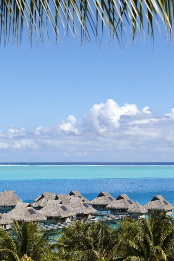 Laguna blu dell'isola di Bora Bora, Polinesia Vista superiore sulle palme, sulle casette tradizionali sopra acqua e sul mare fotografia stock libera da diritti