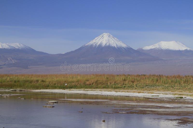 Laguna Cejar, Atacama, Chile stock photo