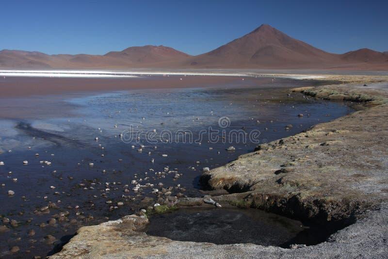 Laguna Colorada imagens de stock