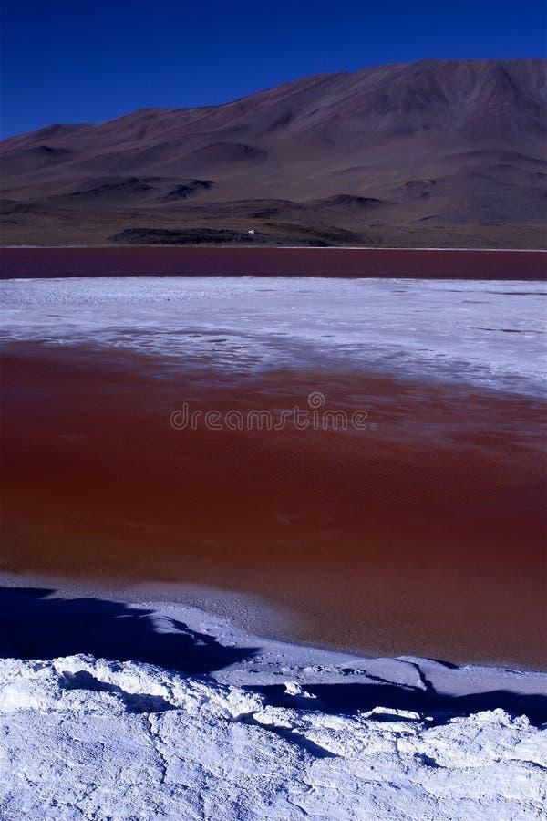 Laguna Colorada image libre de droits