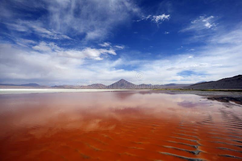 Laguna Colorada fotos de archivo