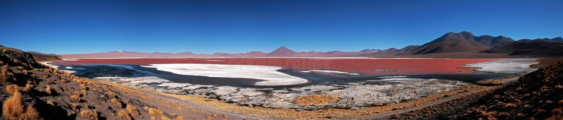 Laguna Colorada royalty free stock images