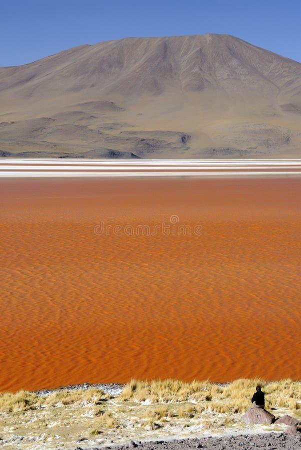 Download Laguna Colorada, Altiplano, Bolivian Andes Stock Photo - Image of altitude, altiplano: 7714146