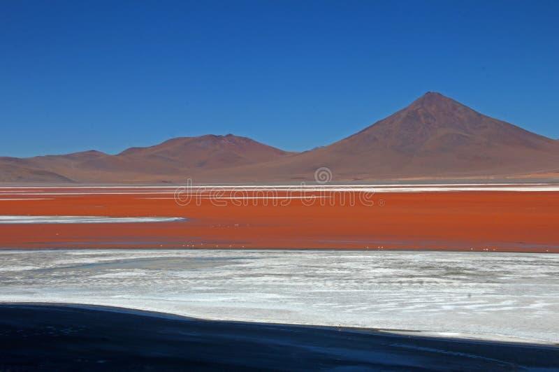 Laguna Colorada Bolivia fotografía de archivo