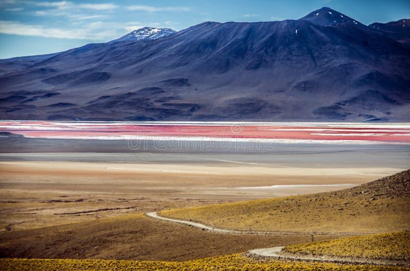 Laguna Colorada em Cordilheira de Lipez, Bolívia imagem de stock