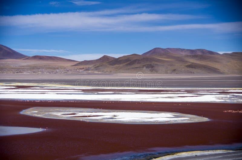Laguna Colorada em Cordilheira de Lipez, Bolívia imagens de stock royalty free