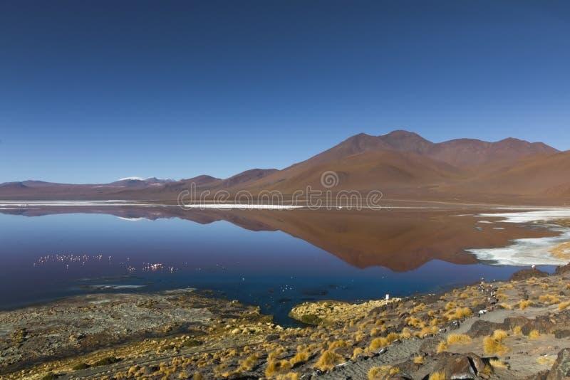 Laguna Colorado fotografia stock