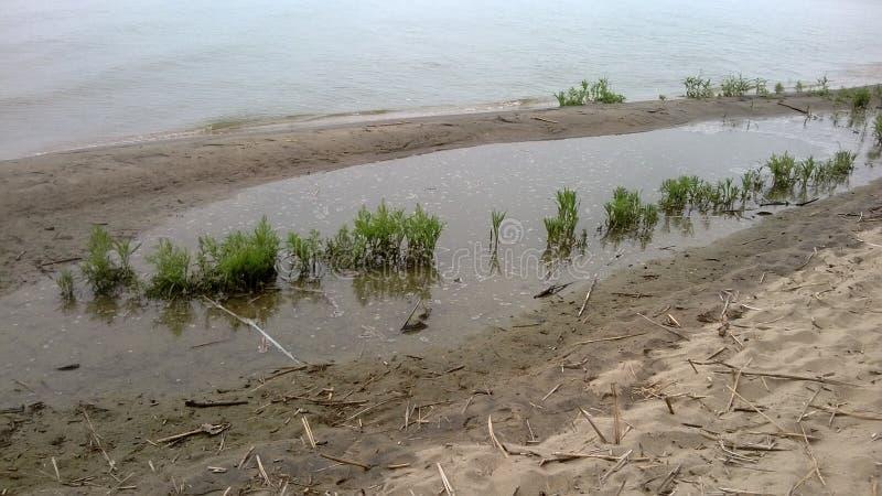 Laguna de Curonian de la playa fotografía de archivo libre de regalías