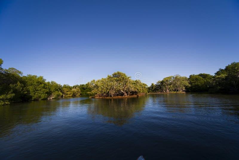 Laguna de le Restinga imagen de archivo libre de regalías